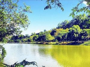 Parque_Primo_Raphaelli