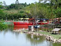 macaquinhos-turismo