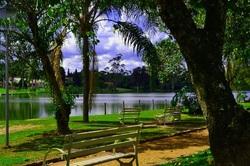 Lago_Vitoria_Regia