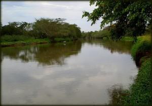 rio-jacare-guacu